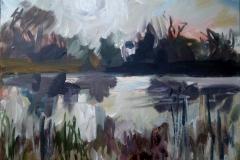Birdsville Sunrise 2010 acry on canv 50x61cm